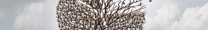 Arbre avec oiseaux 2016