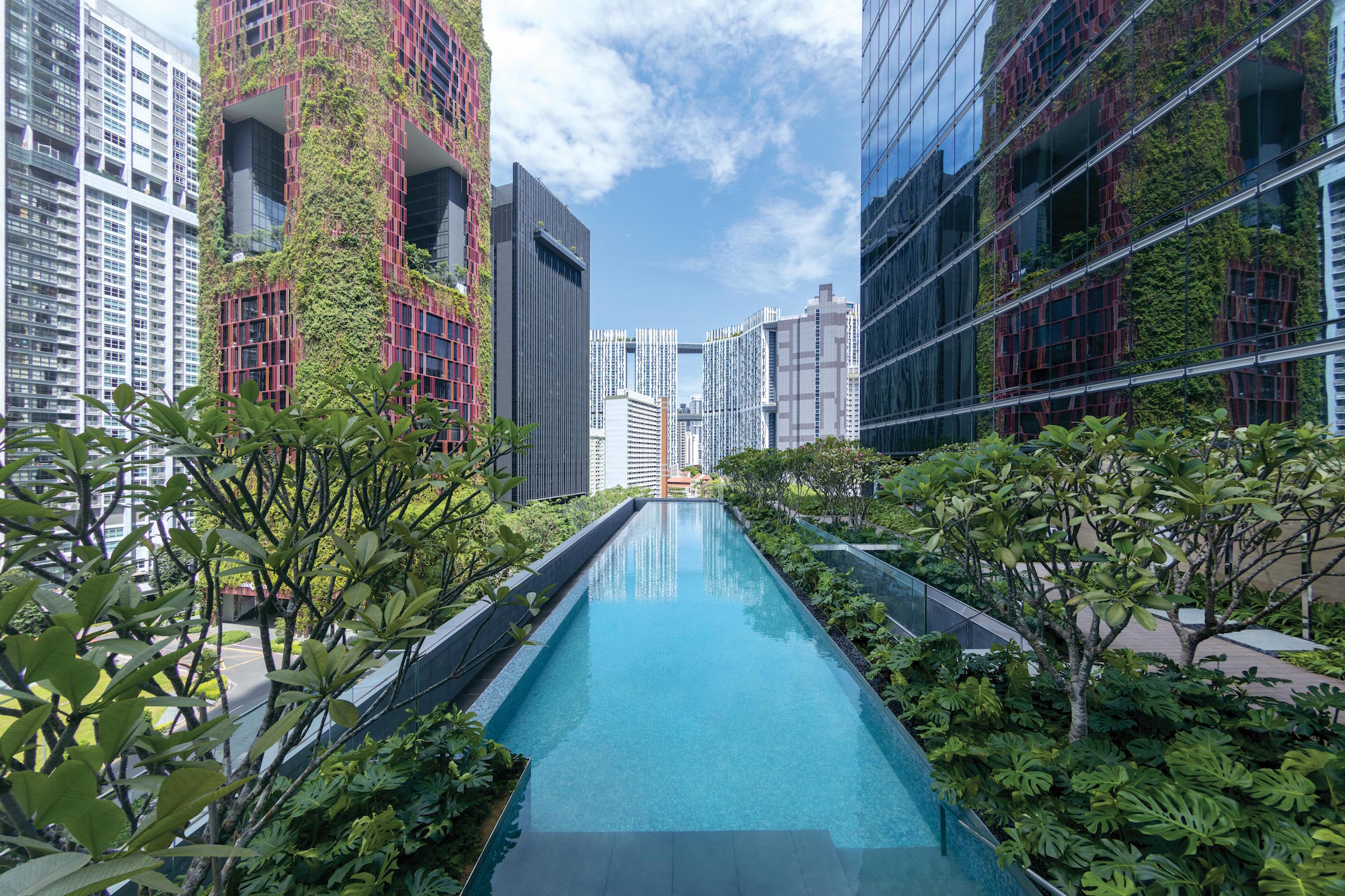 Sofitel Singapour Hotel Asie AccorHotels